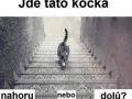 Jde číča ze schodů nebo do schodů?