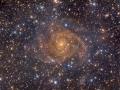 Krásne rozvinutá špirálová galaxia IC342 vzdialená 10 miliónov svetelných rokov...nachádza sa v súhvezdí Žirafy a predpokladá sa, že má gravitačný vplyv na Miestnu kopu galaxii(kde sa nachádza i naša Milky way)...(Eduard Boldižár)