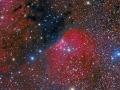 Sharpless 140 sa nachádza od nás 3000 svetelných rokov v súhvezdí Cefeus...je častým cieľom astrofotografov...(Eduard Boldižár)