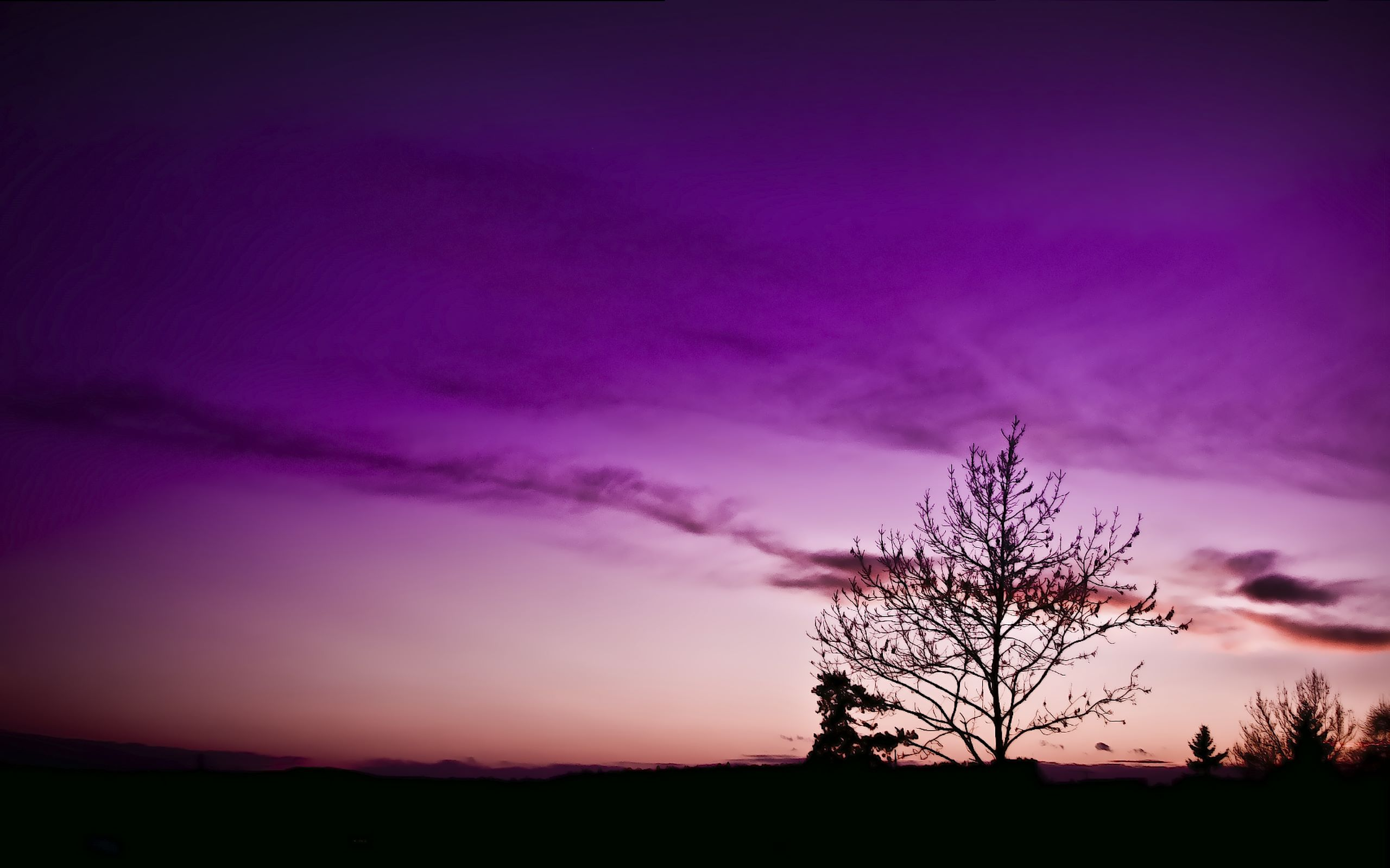 Mr._Tau_and_The_Tree_-_by_TJ