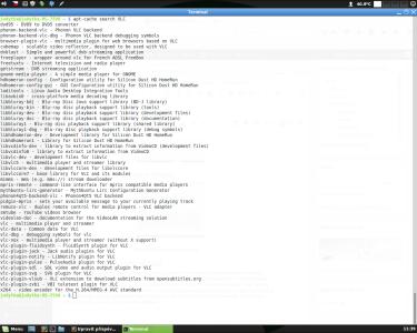 Linux Mint instalace v terminalu