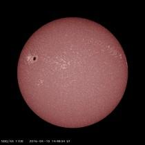 sunspot2529