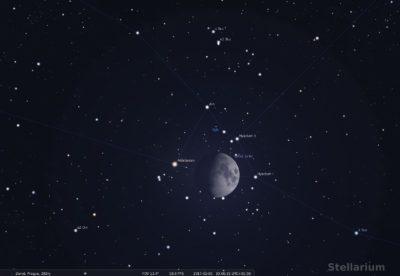 mesic-hyady